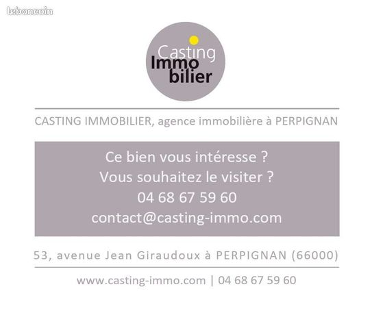 Casting Immobilier Pro Leboncoin