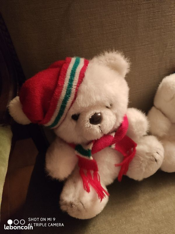 2 belles peluches oursons