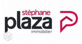 Stephane Plaza Immobilier Pro Leboncoin