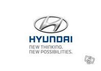 Hyundai Motors Cars Limoges Pro Leboncoin
