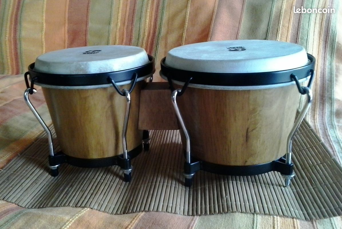 Bongos world beat