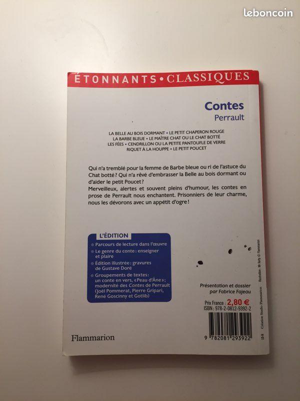 Contes de perrault, collection étonnants classiques, édition flammarion