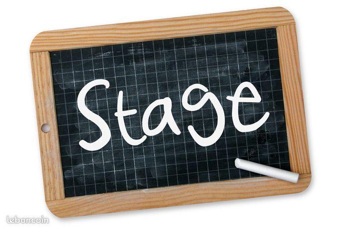 Professeurs en exercice en région parisienne pour des stages de pré-rentrée (H/F)