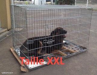Grandes cages de transport neuves pour chien