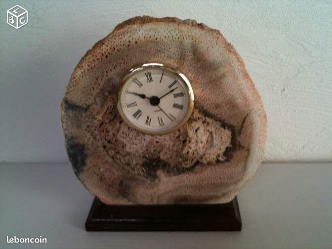 pendule sur tranche de bois fossilis montres bijoux var. Black Bedroom Furniture Sets. Home Design Ideas