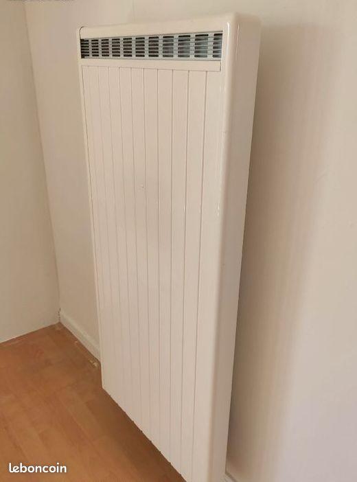 Radiateur electrique vertical à intertie marque rothelec - très haut de gamme